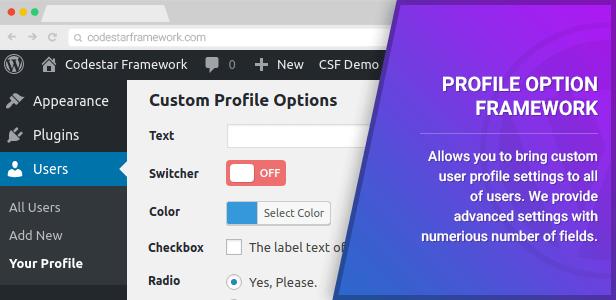 Profile Option Framework
